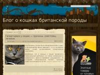 brit-cats-ru